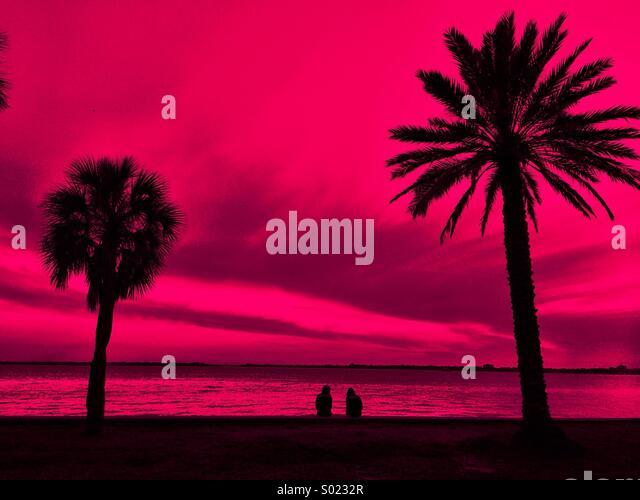 Pink Sky - Stock Image