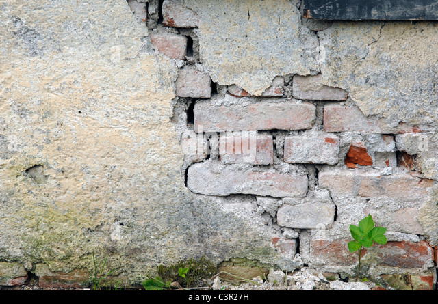 Germany, Munich, Broken wall at demolition house - Stock Image