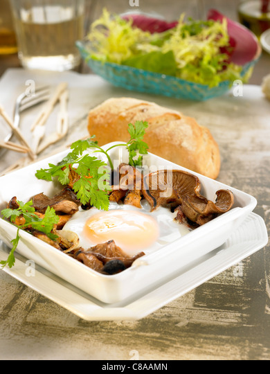 Egg with mushrooms - Stock Image