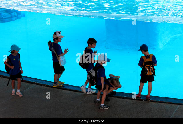 school party in a Zoo in Singapore - Stock Image