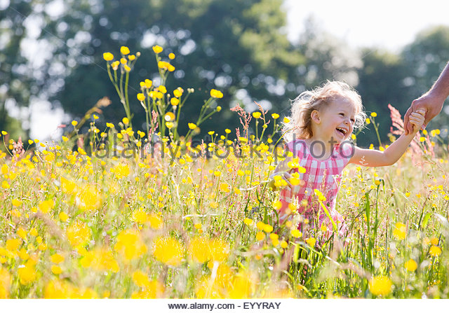 Portrait of smiling young girl holding fathers hand in wildflower meadow - Stock Image