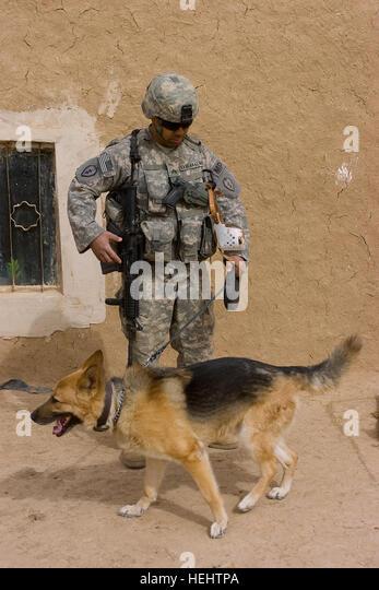 Dog Day Care Kaneohe