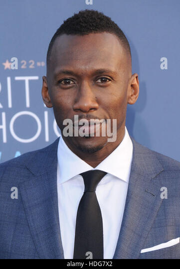 Santa Monica, California, USA. 11th Dec, 2016. 11 December 2016 - Santa Monica, California - Mahershala Ali. The - Stock Image