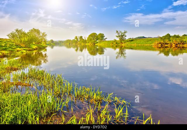 Summer landscape - Stock Image