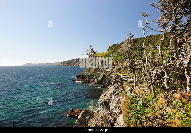 Skerwink trail stock photos skerwink trail stock images for Landscaping rocks canada