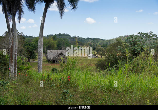 Farm in Pinar del Rio Province, Cuba - Stock Image