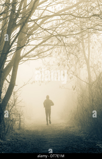 Male jogger on woodland footpath on misty morning - Stock Image