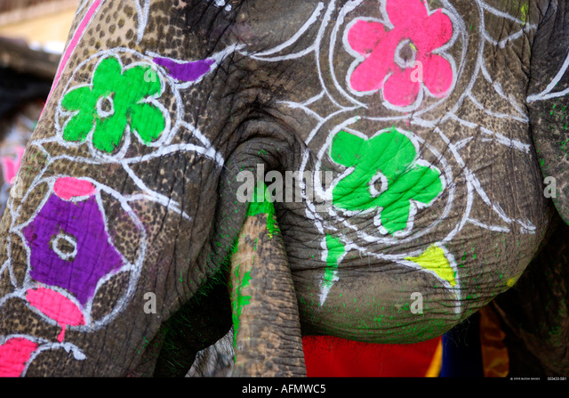 Elephant painted in preparation for the Elephant Festival Jaipur India - Stock Image