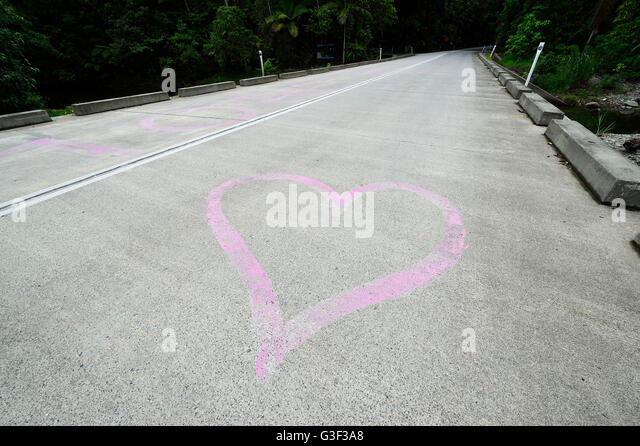 Cape tribulation road stock photos cape tribulation road for Diwan queensland