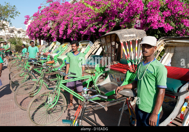 Green riders, cycle rickshaw wallahs encouraging environmentally friendly travel around Puri, Orissa, India - Stock Image