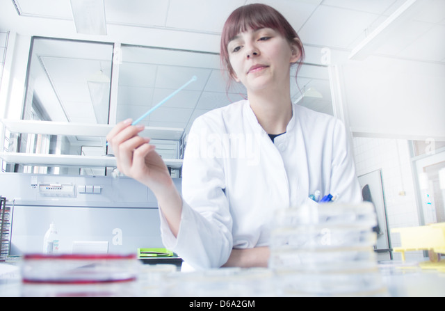 Scientist testing strip in lab - Stock Image