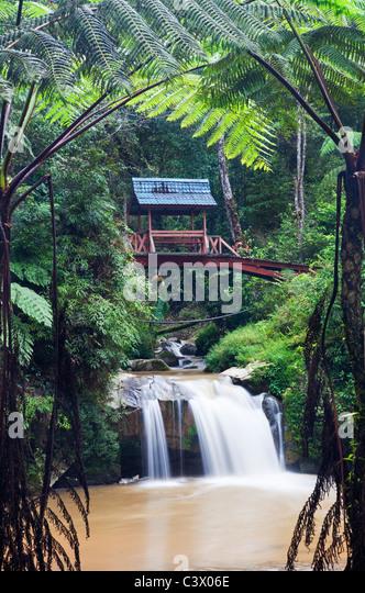 Parit Falls, Cameron Highlands, Malaysia - Stock Image