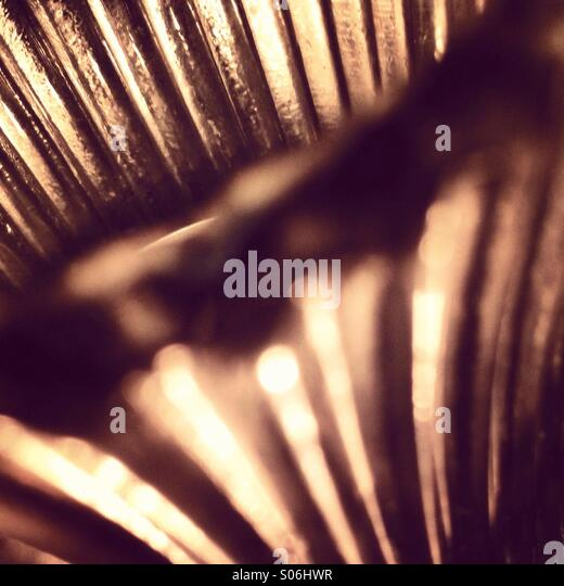 Lines and light - Stock Image