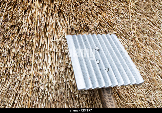 An old barn being re thatched in the Dorset village of Symondsbury, Dorset UK - Stock Image