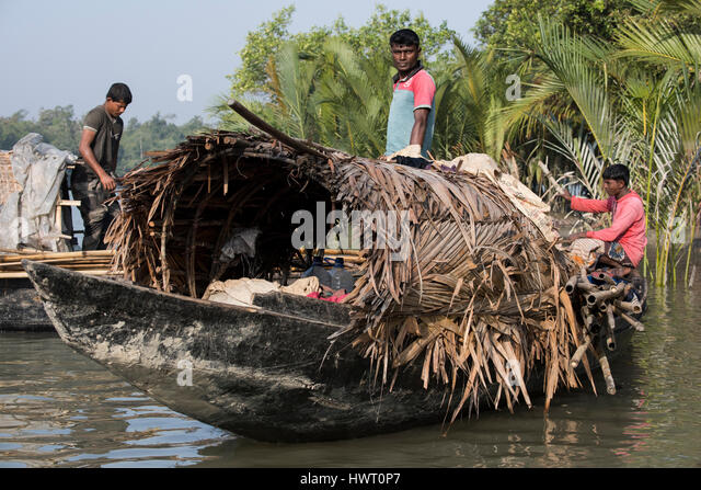 Bangladesh, The Sundarbans, Sundarban National Park. Waterways between Harbaria and Charaputia. Typical prawn (chingri) - Stock-Bilder