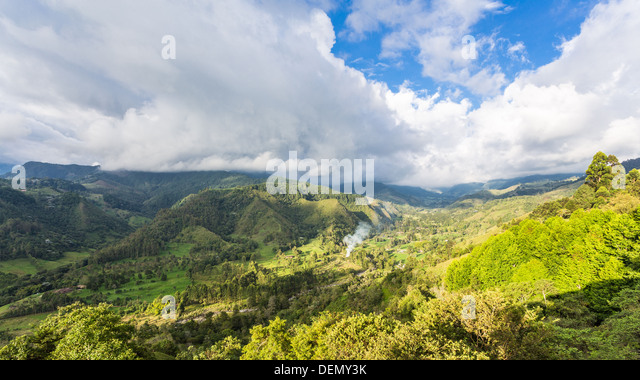 COLOMBIA - CIRCA 2013: Day in Salento and panorama of coffee plantation and a green landscape - Stock Image