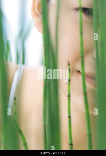 Womans face seen through reeds - Stock Image