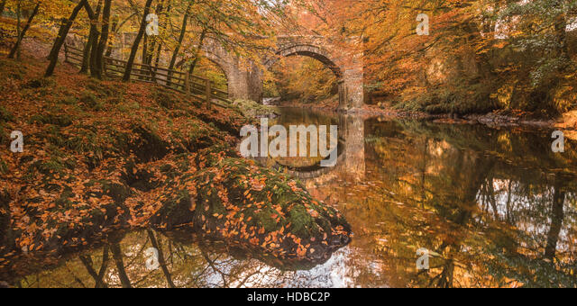 River Dart at Holne Bridge, Dartmoor, near Ashburton, South Devon  during autumn - Stock Image