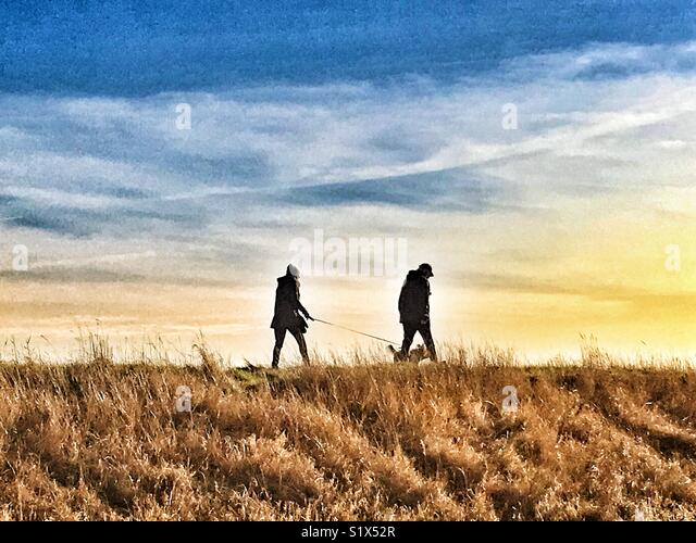Walking the dog in the British countryside - Stock Image