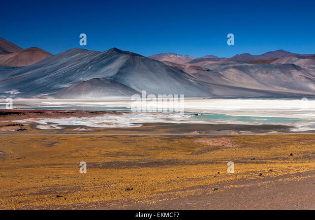 Alues Calientes high on the altiplano in the Atacama Desert in northern Chile. The white areas are deposits of salt. - Stock Image