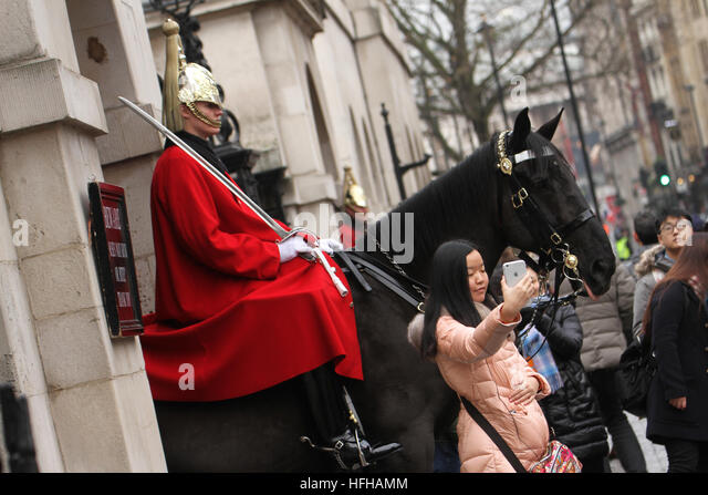 London, UK. 1st January 2017. A tourist takes selfies by a mounted Horse Guard at Whitehall along the  New Years - Stock Image