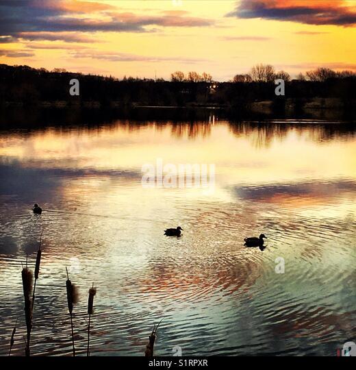 Sunset over lake - Stock Image