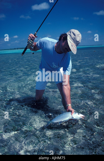 Belize Central America Bonefishing Turneffe Islands - Stock Image