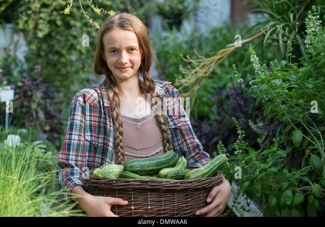 Summer on an organic farm. A girl holding a basket of fresh marrows. - Stock Image