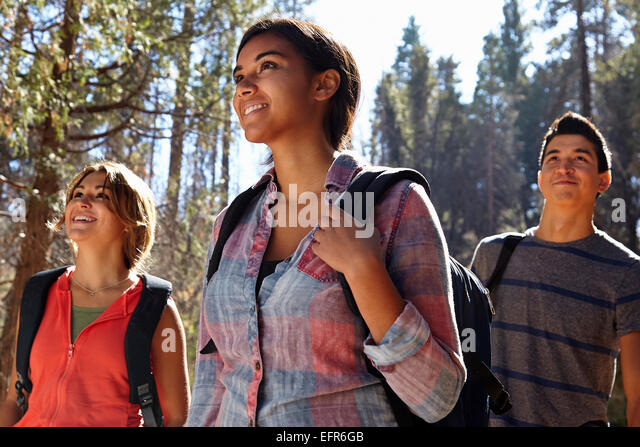 Three young adult friends hiking in forest, Los Angeles, California, USA - Stock Image