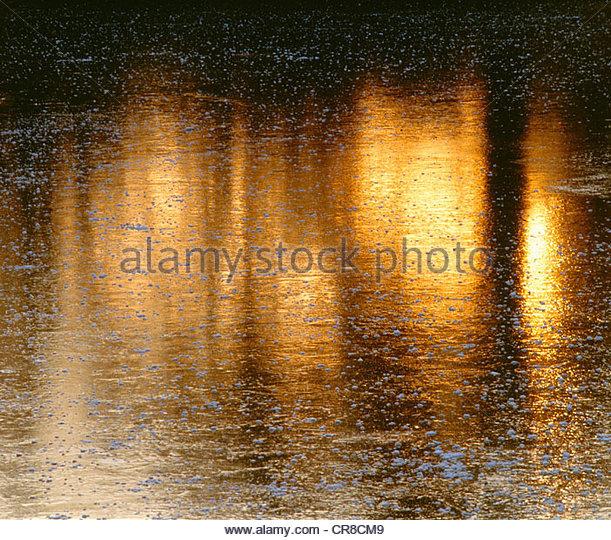 Sunset, George C. Reifel Migratory Bird Sanctuary, British Columbia, Canada - Stock Image