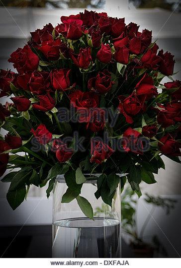 rose rouge stock photos rose rouge stock images alamy. Black Bedroom Furniture Sets. Home Design Ideas