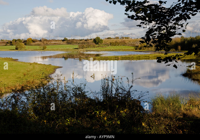 Sandbach Flashes a birding location in Cheshire. - Stock Image