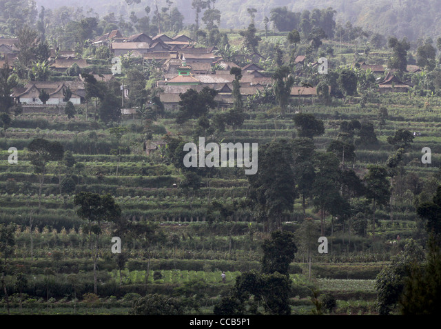 Terrace farming southeast asia stock photos terrace for Terrace yogyakarta