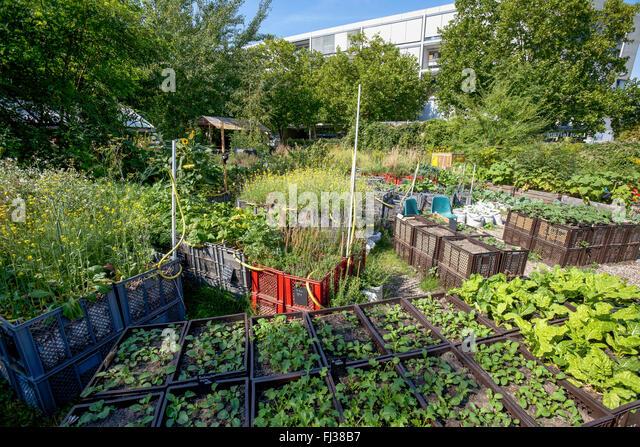 garden gardening germany stock photos garden gardening germany stock images alamy. Black Bedroom Furniture Sets. Home Design Ideas