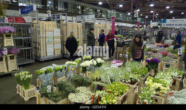 Cut flowers on sale at New Covent Garden Market, London - Stock Image