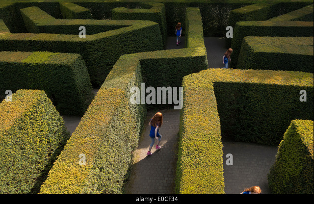 Young girl 11-12 years tween lost in a labyrinth hedge maze by herself playing running looking for the way out - Stock Image