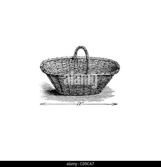 Rouen Strawberry Basket victorian 19th century illustration - Stock-Bilder