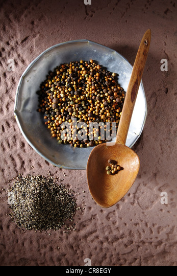Colourful peppercorns (Piper nigrum) on a metal plate with a wooden spoon and coarsely ground pepper on a rustic - Stock Image