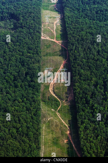 aerial photograph swath through forest for electrical powerlines Alabama - Stock Image