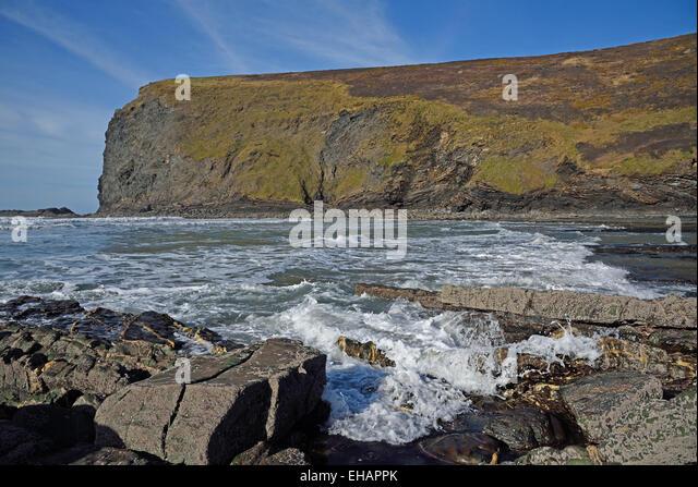 Pencannow Point at Crackington Haven, near Bude, Cornwall, UK - Stock Image