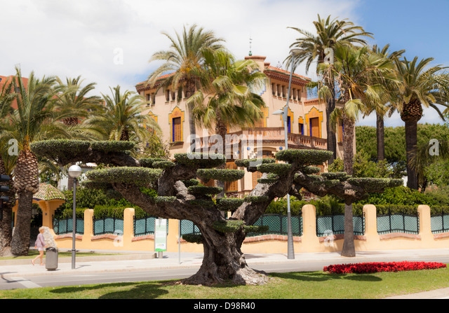 topiary tree and xalet bonet built by Ciriac Bonet late modernism architecture at Salou Spain - Stock Image