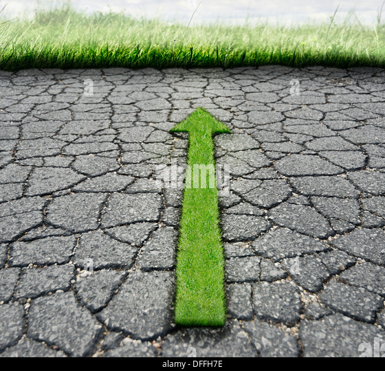 Broken Asphalt And Green Grass.Nature Concept - Stock Image