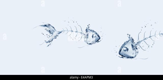 Two water fish bones talking in blue water. - Stock Image