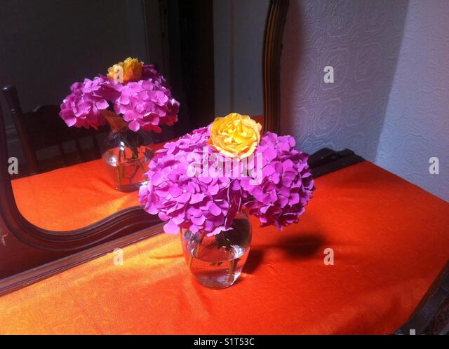 Colorful bouquet hydrangeas and rose - Stock Image