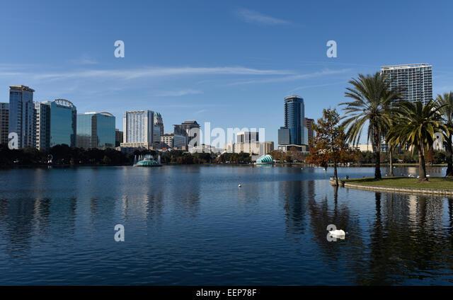 Swans at Lake Eola Park, Orlando, Florida. - Stock Image