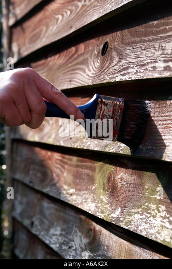 creosote, creosoting, painting, fence, shed, woodwork, paintbrush, DIY, waterproofing, preserving, preservative, - Stock-Bilder