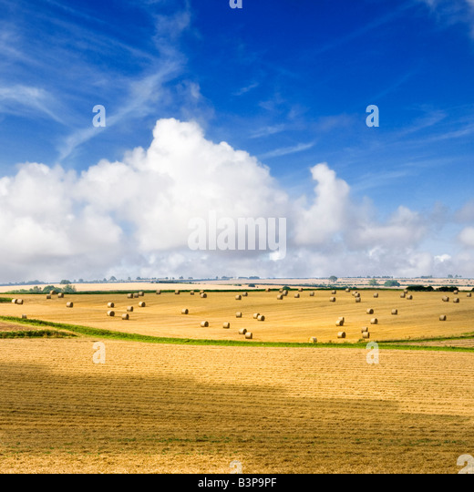 English countryside - Hay bales and rolling hills of the Lincolnshire Wolds, England, UK - Stock Image