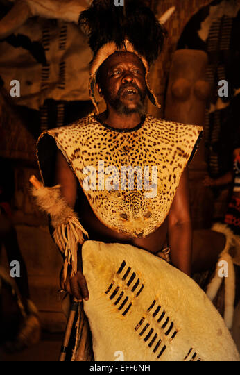 Zulu chief with headdress and leopard skin ceremonial dress holding white shield at culture village Shakaland South - Stock-Bilder