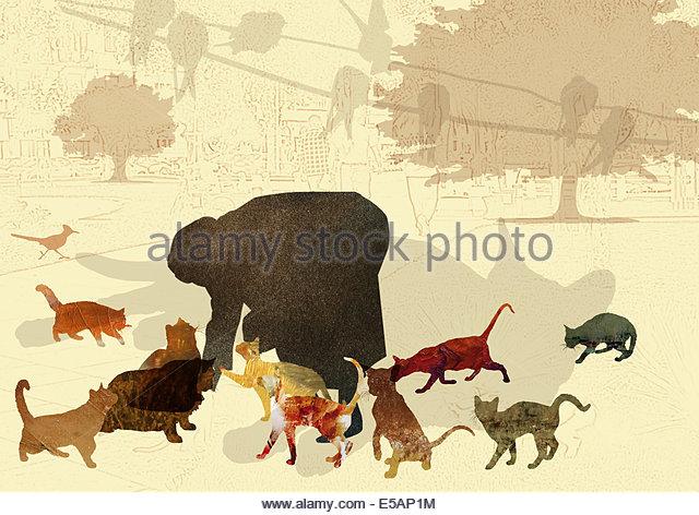 Woman feeding cats - Stock Image