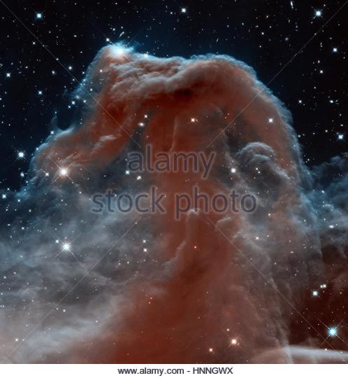 Hubble Telescope's Wide Field Camera 3 looks through the Horsehead Nebula in a uniquely detailed infrared image. - Stock Image